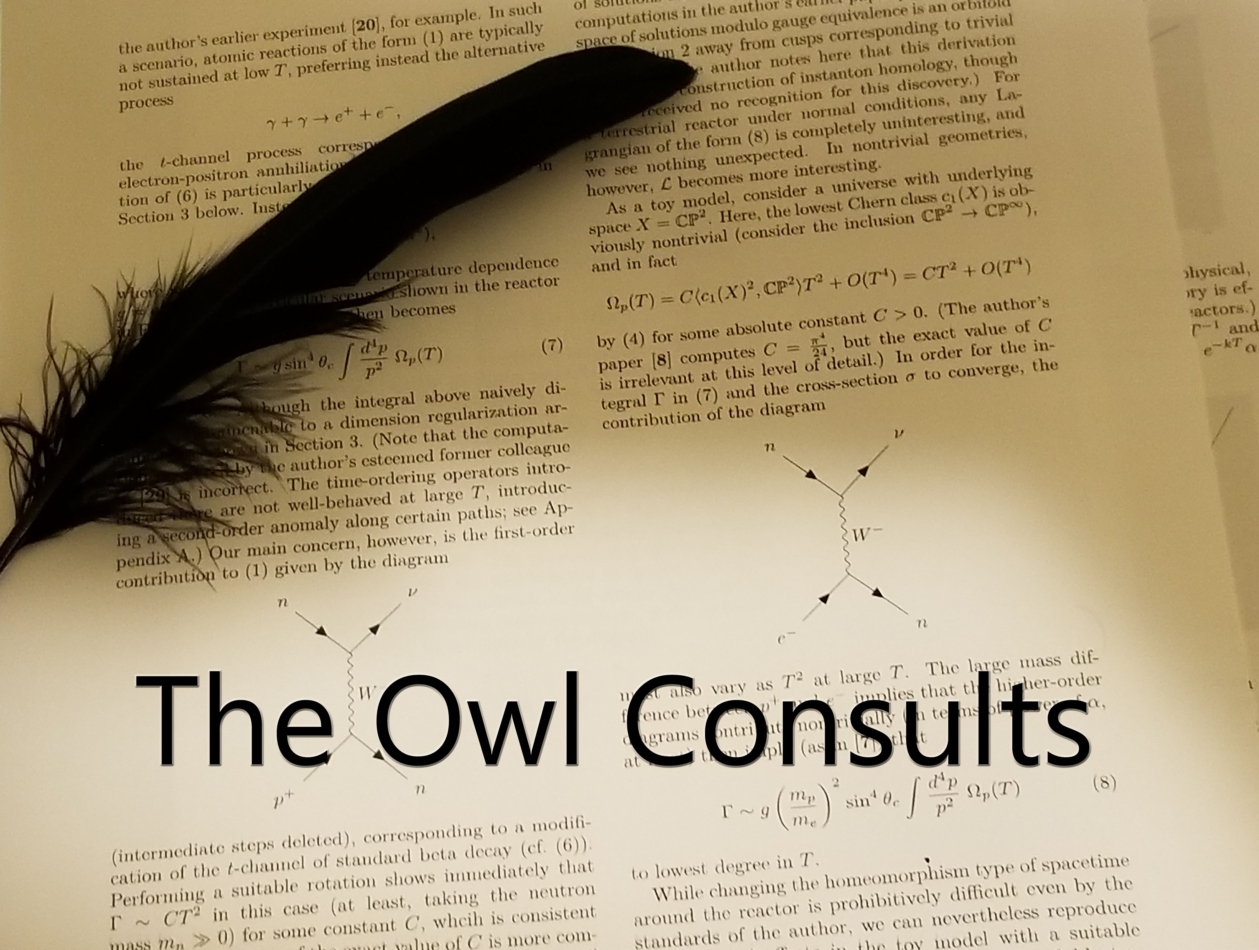 Cover art for The Owl Consults