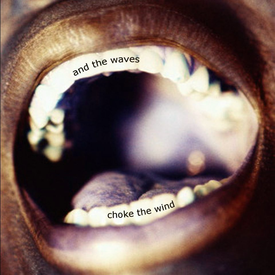 Cover art for And the Waves Choke the Wind