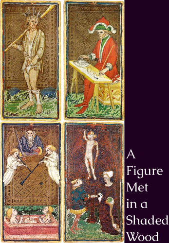 Cover art for A Figure Met in a Shaded Wood