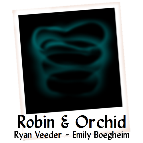 Cover art for Robin & Orchid
