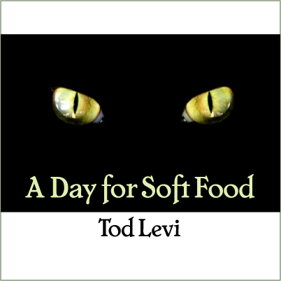Cover art for A Day for Soft Food