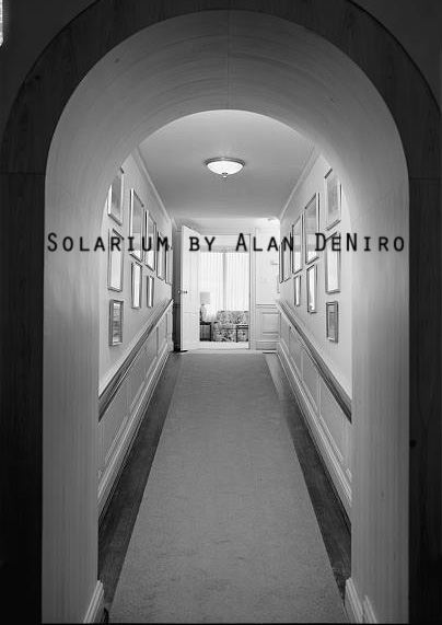 Cover art for Solarium