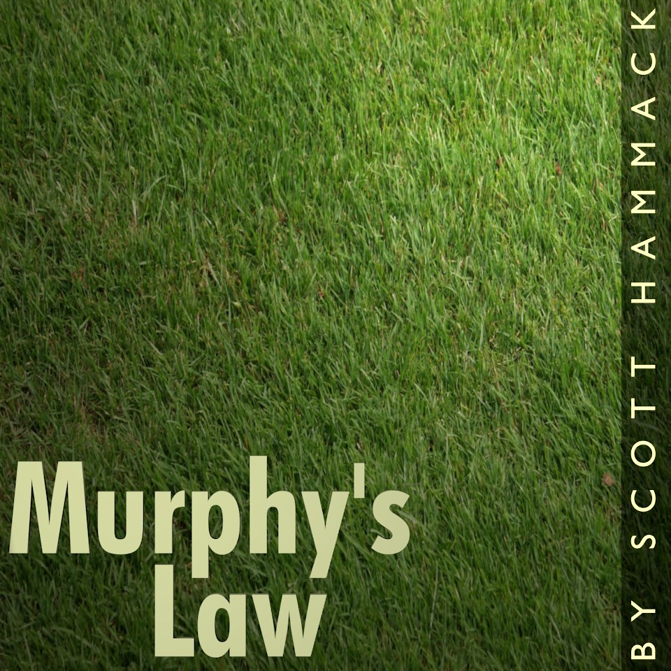 Cover art for Murphy's Law