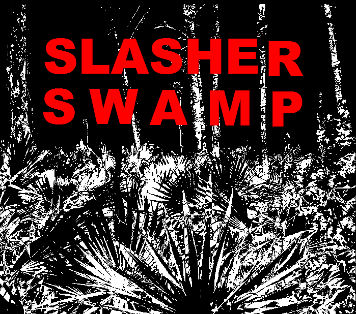 Cover art for Slasher Swamp