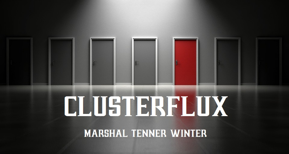 Cover art for Clusterflux
